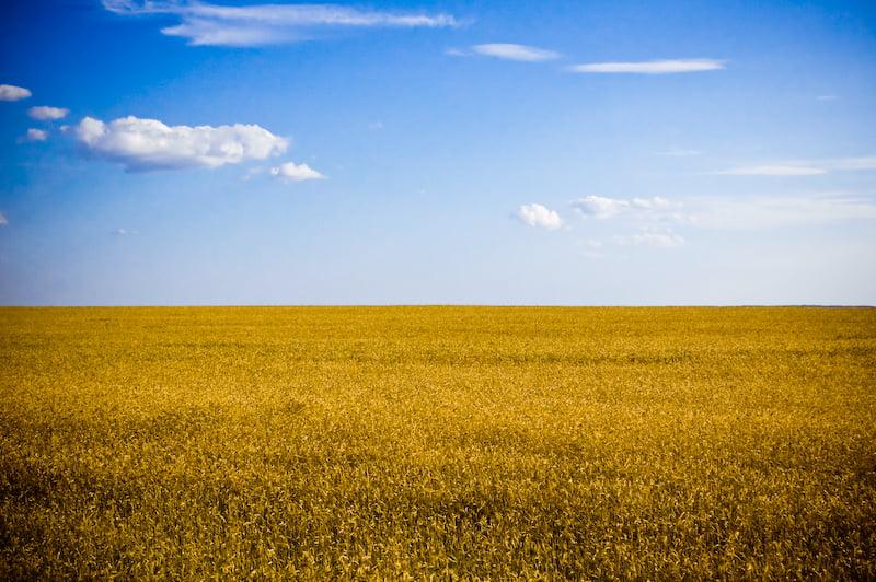 Изображение - Вид на жительство в украине 2716662543_f2d45f1cfe_o
